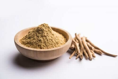 Adaptogens, Stress, and Your Health